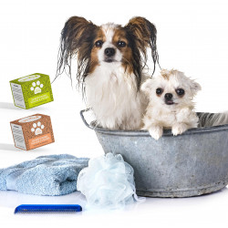 Shampoing solide pour animaux